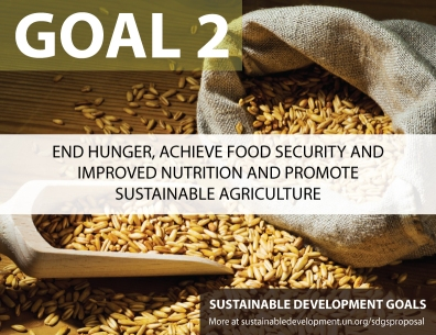 Goal-2 SDGs