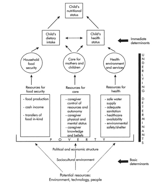 Conceptual framework guiding empirical analysis. Sources: Adapted from UNICEF (1990, 1998), Engle, Menon, and Haddad (1999)